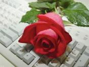 red rose on key board